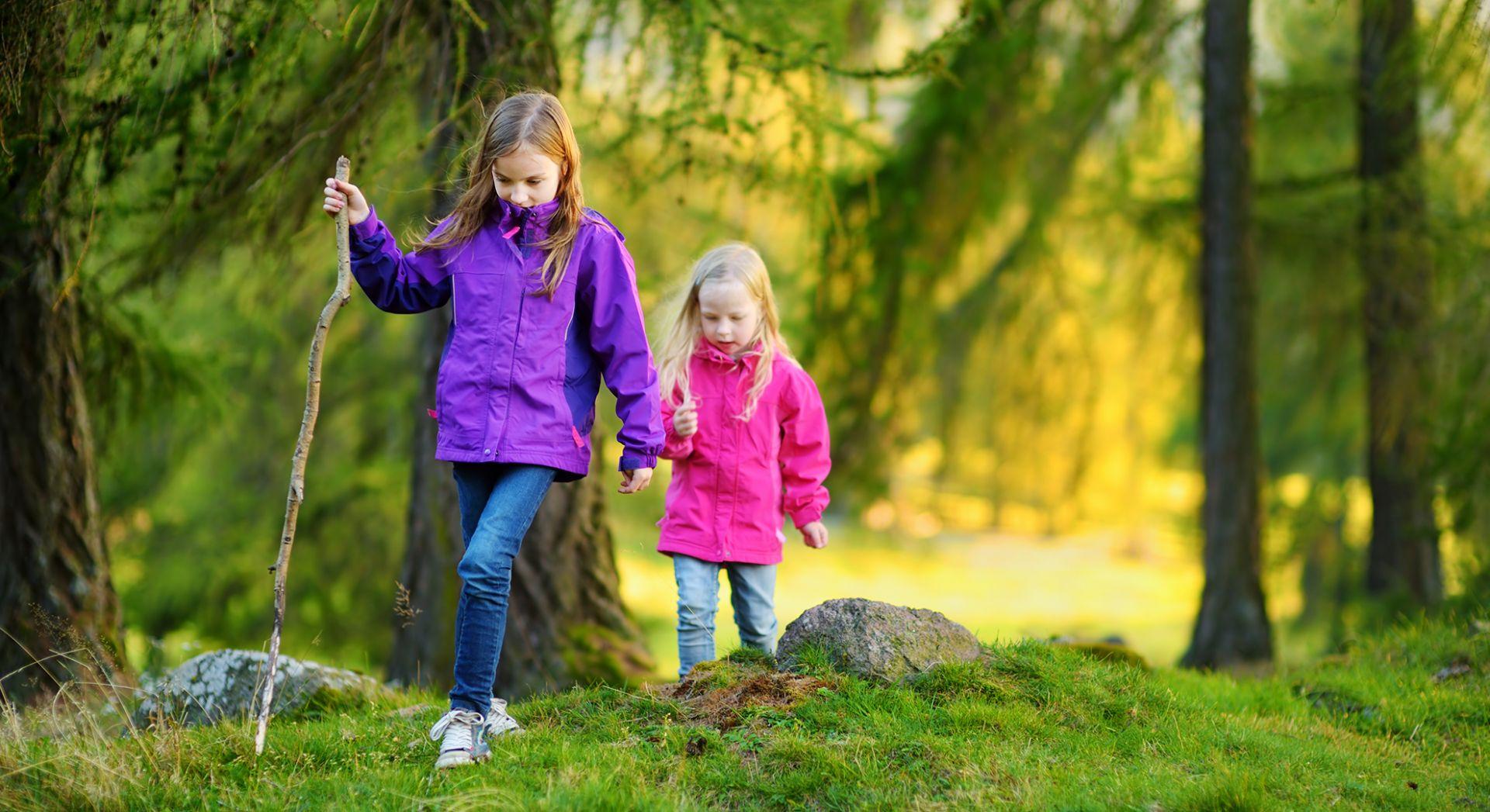 lapset vaeltamassa metsässä