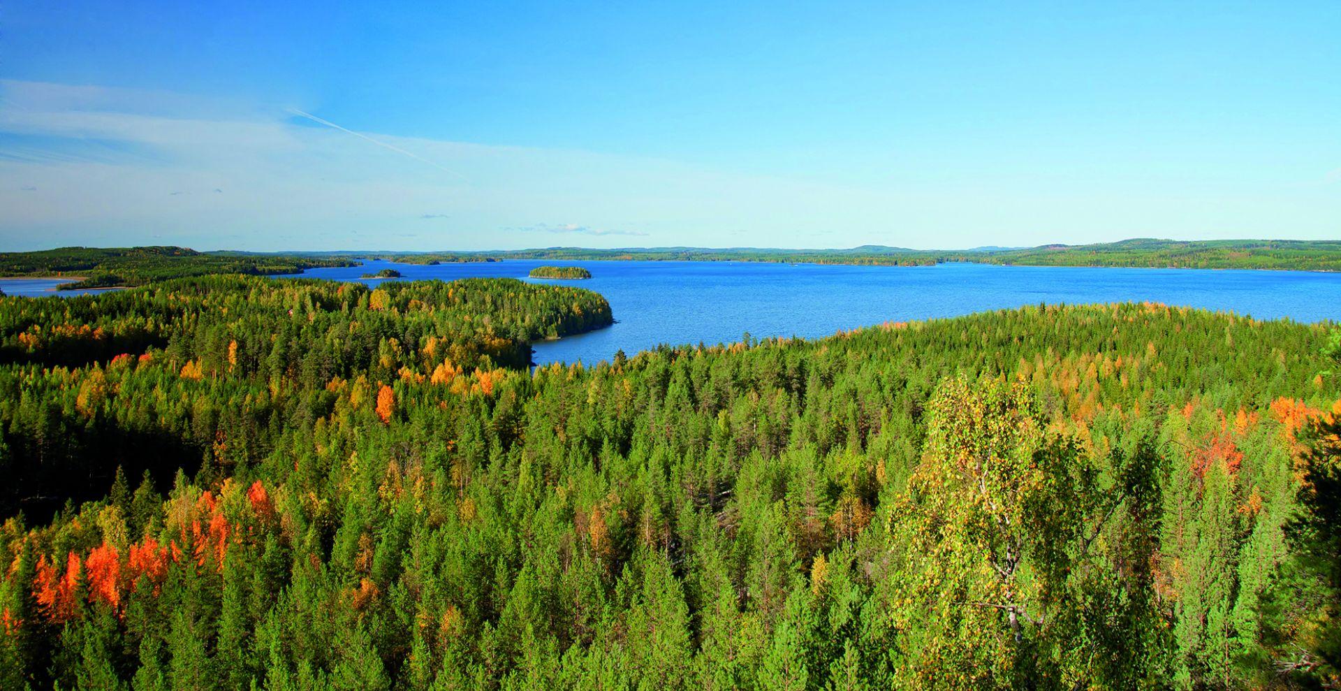 metsä- ja järvimaisema ylhäältä päin kuvattuna