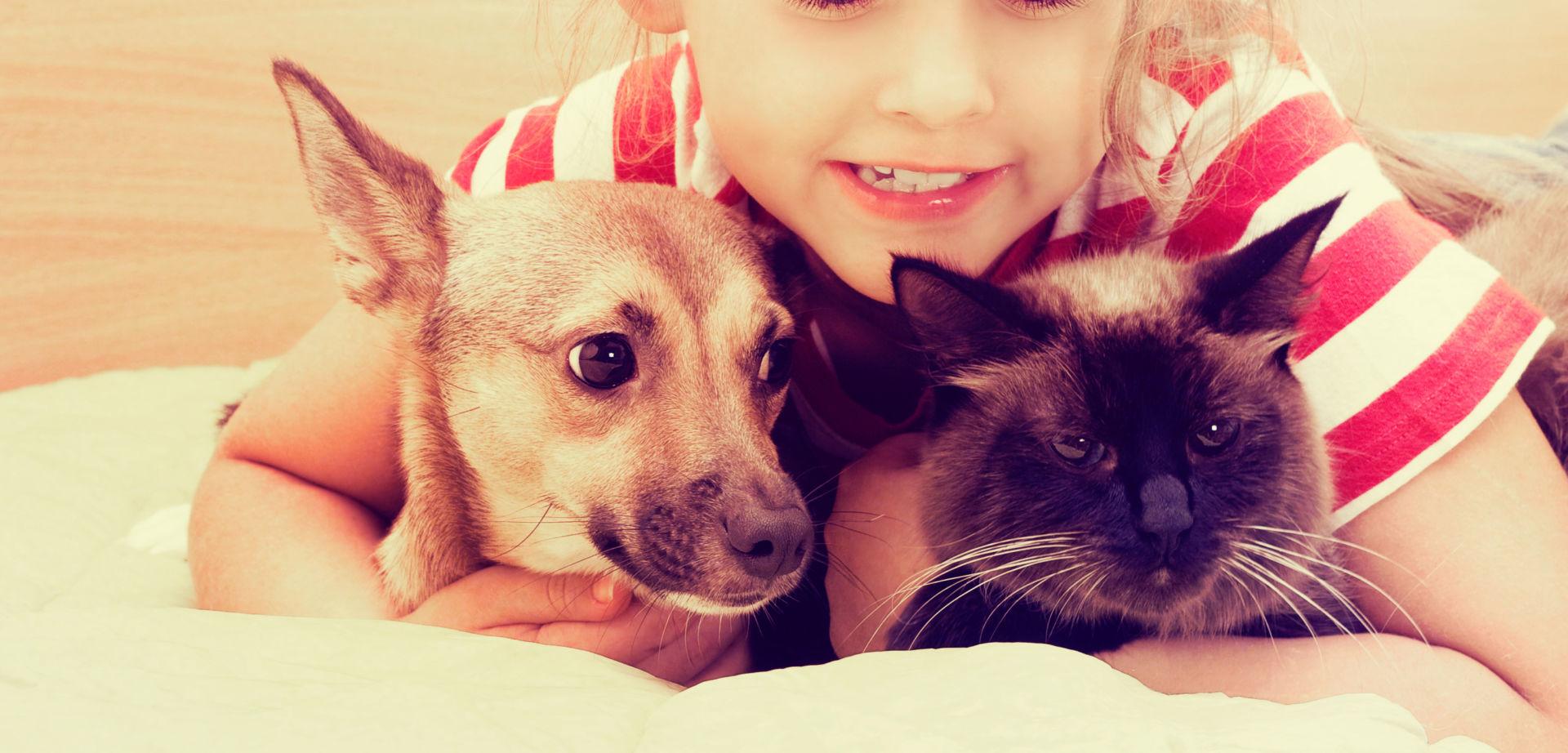 Lapsi kissan ja koiran kanssa sängyllä