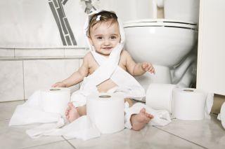 taapero istuu vessan lattialla vessapaperikasassa