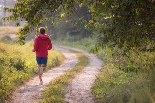 poika juoksee metsätietä pitkin