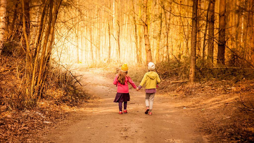 Pohjantähti kaksi lasta kävelee syksyisessä metsässä